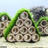 (水草)育成済 ライフマルチ(茶) ウィローモスコテージ(大)(無農薬)(1個)