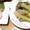 ウルイの天ぷら・鯛を昆布でシメる