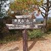 【ナニコレ珍百景】大量のおもちゃ、ぬいぐるみの山、広島市三滝山の場所や行き方は?周辺の観光地もあるか調査