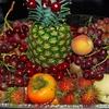 高級フルーツランキング!お取り寄せでも一度は食べたい美味しい果物をフルーツオタクが厳選!