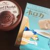 イオンで糖質制限向けな乳製品不使用のチョコアイスとホロカをゲット。