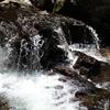 バイブル・エッセイ(770)喜びの泉