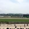 2017 NHKマイルカップ 感想戦