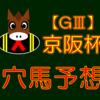 【GⅢ】京阪杯 結果 回顧