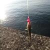 今日はブリとカラフトマスのW試釣。だけど釣れたのはカンカイばかり