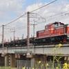 第831列車 「 配9993レ DD51牽引のレール配給列車を狙う」