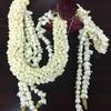 インドネシアの国花 ジャスミン。香りはお化けを招待すると…  インドネシア人はお化け話が大好きです。
