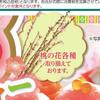 情報 商品 桃の花 ひな祭り マミーマート 3月3日号