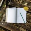 日記を捨てることで手放したものとは?(わたしが汚部屋から脱出するまで3)