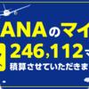 ANAのマイル8月分積算完了! 計246,112マイル