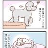 好みの厚さ【092】