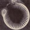 ロバートフラッド「Utriusque Cosmi Historia 2つの宇宙の歴史」