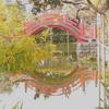 天満宮の橋は戻ってはいけない⁈ 亀戸天神社の歩き方。(東京都江東区亀戸)