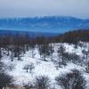 八子ヶ峰・東峰(1,869m) 2020年1月27日