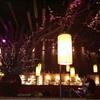 静安寺 創作日本料理 DOZO
