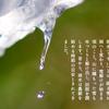 本日2月19日は暦上では二十四節気の一つ『雨水』!関東甲信地方でも春一番が吹くかも!?2019年最大の『スーパームーン』が見られる日でもあるよ♪