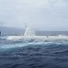 【ハワイ観光】マウイ島からアトランティス潜水艦で海底ツアー