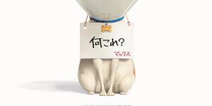 【2019年7月】新作公開映画スケジュール:ピックアップ作品