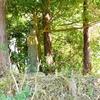 線路のすぐそばに祀られる猿田彦大神 福岡県田川郡香春町高野
