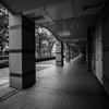 国道駅~横浜駅ウォーキング #3