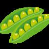 インゲン豆の成長~家庭菜園2020年06月第5週&07月第1週