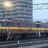 富田駅で名物貨物列車を見物 JR東海 完乗の旅 4日目⑦