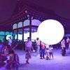 下鴨神社のライトアップ、光の祭【動画】