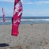 2016延岡市長杯うみがめカップ サーフィンコンテスト