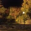 紅葉の鳴子温泉