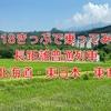 【青春18きっぷ】青春18きっぷ旅で乗ってみたい長距離普通列車(JR北海道、東日本、東海編)