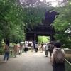 【報告】マインドフルネスの本流!緑濃い九品仏界隈で開催された「気づきの日」に参加しました。
