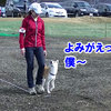 JKC 山中湖 北陸甲信越ブロック訓練競技会 3