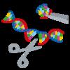 ゲノム編集で作られる食品(その1:手法と従来の品種改良との相違)