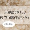 【天穂のサクナヒメ】攻略に役立つ(かもしれない)稲作メモとタイムテーブル