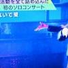 ★★★離さないで愛…関西人民★★★