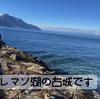 2021.2.11 【湖の古城】 トロ危機一髪の湖桟橋に行って来ました‼️  Uno1ワンチャンネル宇野樹より