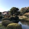 徳川綱吉と徳川吉宗と関係が深く桜も楽しめる「小石川植物園」