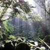 【竜爪山】2013年8月1日  虫と暑さと長い階段との戦い(日帰り登山)