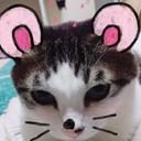 jknimo's blog