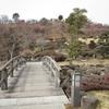 梅まつり1(山口県光市、冠山総合公園)