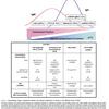 自己免疫性溶血性貧血(AIHA)の概念