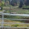 東日本大震災5回目の秋(10月26〜28日) 放射能汚染地帯を行く⑨