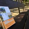 柴崎友香『公園へ行かないか? 火曜日に』書評/今年はこれを読めたらかもう問題ない。