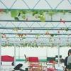 GREENARIUM awajishimaに行きました