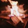 焚き火の薪ってどう入手してますか?フォロワーさんに聞いてみました。