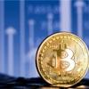 ビットコインは2030年には50万ドルに到達する!将来性は!?