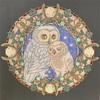 月とフクロウの塗り絵【マンダラコロリアージュ】テーマは魔法