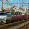 11月9日撮影 東海道線 平塚~大磯間 貨物列車撮影② 5095ㇾ 2079ㇾ