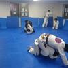 ねわワ宇都宮 7月27日の柔術練習