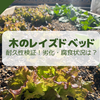 【レイズドベッド】木の劣化・腐食の状況レポート(1年経過)